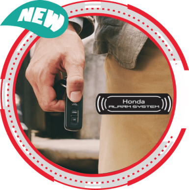 Anti-Theft Alarm with Answer Back System