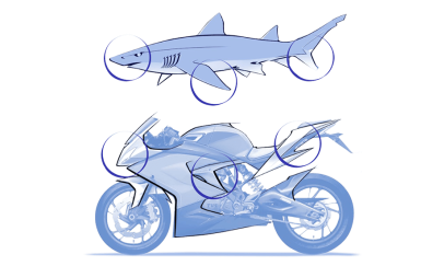 Shark Concept Mobile